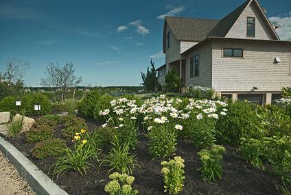 Landscape Design Kennebunk, Maine
